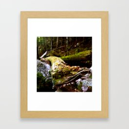 Introductions Framed Art Print