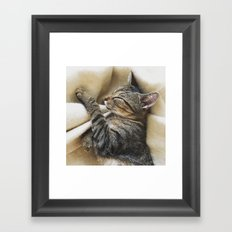 It's A Cat's Life Framed Art Print