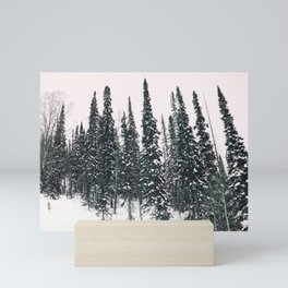 Winter day 11 Mini Art Print