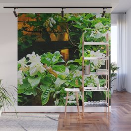 Flowers At Dusk Lit By Lantern Light Wall Mural