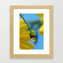 double yellow drop Framed Art Print