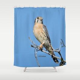 A Kestrel Says Hello Shower Curtain