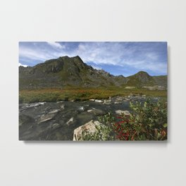 Hatcher Hike - Alaska Metal Print