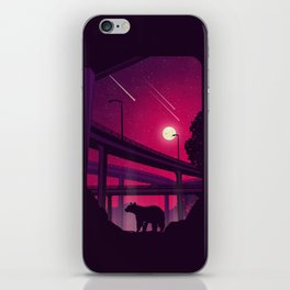 Over Passed iPhone Skin