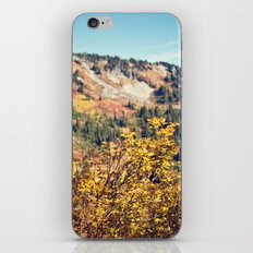 Fall in the Mountains  iPhone & iPod Skin