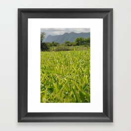 too much grass Framed Art Print