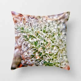Skywalker OG Kush Strain Frosty Buds Calyxes Trichomes Close Up View Throw Pillow