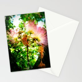 Mimosa Flower Stationery Cards