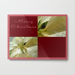 Pale Yellow Poinsettia 1 Merry Christmas Q10F1 Metal Print