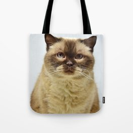PAWSCH Tote Bag