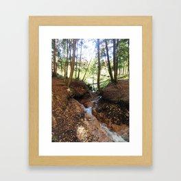 The stream cuts a path Framed Art Print