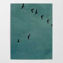 GEESE FLYING - TEAL Poster