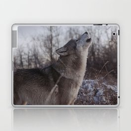 Song Laptop & iPad Skin