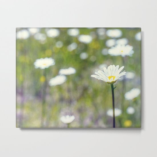 painted field Metal Print