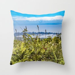 Looking Through Tall Grass and Wildflowers at the Lake on top of Mombacho Volcano, Nicaragua Throw Pillow