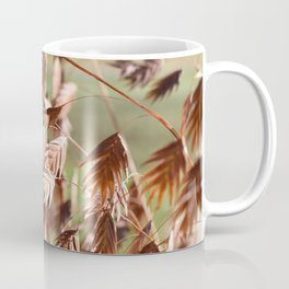 Closeup of brown (dried) plants outdoor Coffee Mug