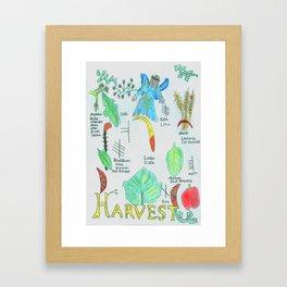 Harvest Energy Framed Art Print