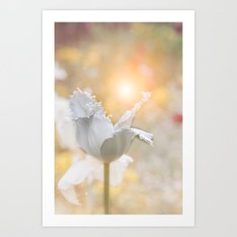 Virgin Tulip and the Dance of the Fairies Art Print