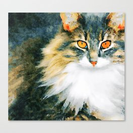 Cat with Orange Eyes Canvas Print