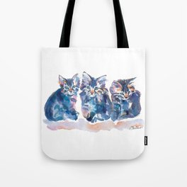 Crazy Quilt Kittens Tote Bag