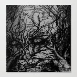 fears Canvas Print