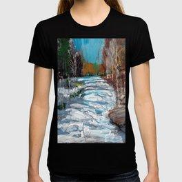 Melting Snow in McKinnon Ravine / Dennis Weber / ShreddyStudio T-shirt