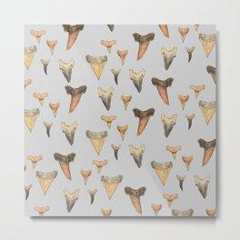 Shark Teeth Study - Grey Metal Print