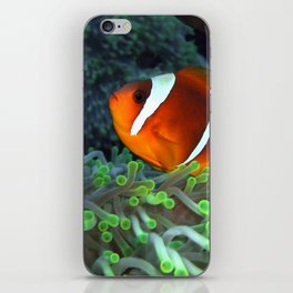 Anemone Fish in Anemone iPhone Skin