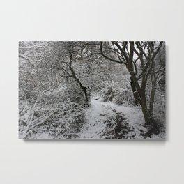 Landpark Wood Metal Print