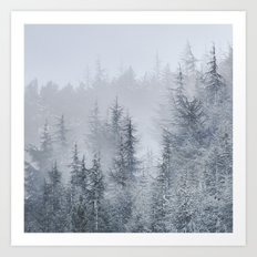 Early moorning... Into the foggy woods Art Print