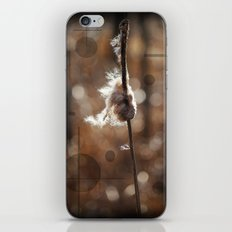 Pussy Willow Winds iPhone & iPod Skin