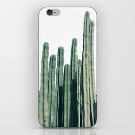 Cactus Line iPhone Skin