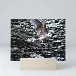 Seagull Bird Takeoff Sea Water Mini Art Print