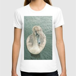 young swan in autumn T-shirt