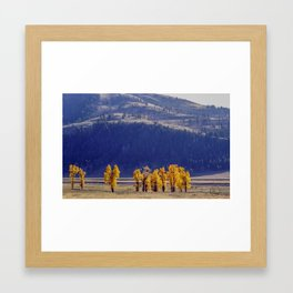 The Colors of Lamar Valley, Yellowstone Framed Art Print