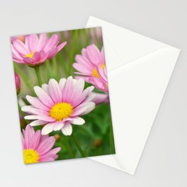 Daisy pink 090 Stationery Cards
