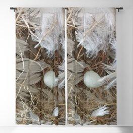 Empty nest Blackout Curtain