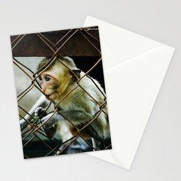 Monkey in Ninh Binh Stationery Cards