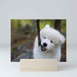 Sticks are best Mini Art Print