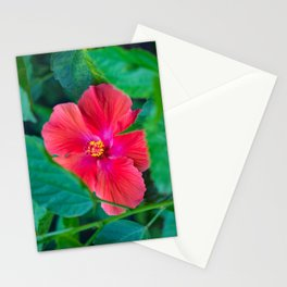 Red Hibiscus Peaking through the leaves Stationery Cards