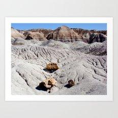 The Painted Desert & Petrified Forest Art Print