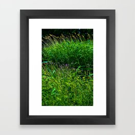 Pure Nature Framed Art Print