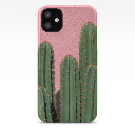 Cactus on Pink, Melrose Place by jeffmindell
