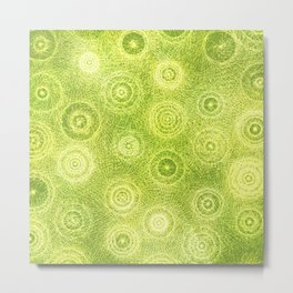 The Appearance of Fine Limes Metal Print