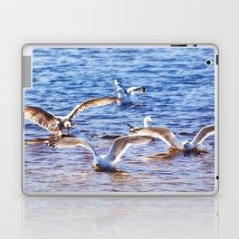Landing Party Laptop & iPad Skin
