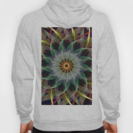 Perfectly swirling ribbons, fractal abstract Hoody