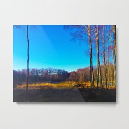 Calm in the Highlands Metal Print