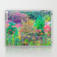 A Walk Among the Colors V Laptop & iPad Skin