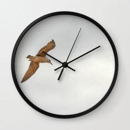 Seagull bird flying Wall Clock