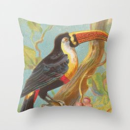 Vintage Illustration of a Toucan (1889) Throw Pillow